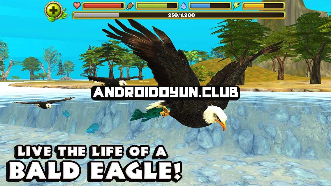 eagle-simulator-1-0-full-apk-1_androidoyunclub