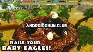 http://androidoyun.club/wp-content/uploads/2014/09/eagle-simulator-1-0-full-apk-2_androidoyunclub-300x169.jpg