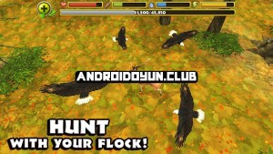 http://androidoyun.club/wp-content/uploads/2014/09/eagle-simulator-1-0-full-apk-3_androidoyunclub-300x169.jpg