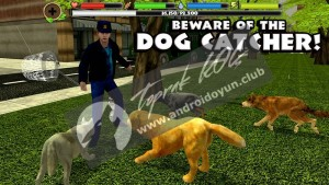stray-dog-simulator-v1-4-full-apk-3