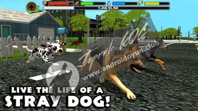 stray-dog-simulator-v1-4-full-apk
