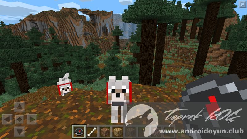 how to train an ocelot in minecraft pocket edition