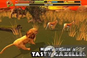 safari-simulator-lion-v1-0-full-apk-3