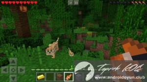 minecraft-pocket-edition-v0-13-0-build-1-full-apk-2